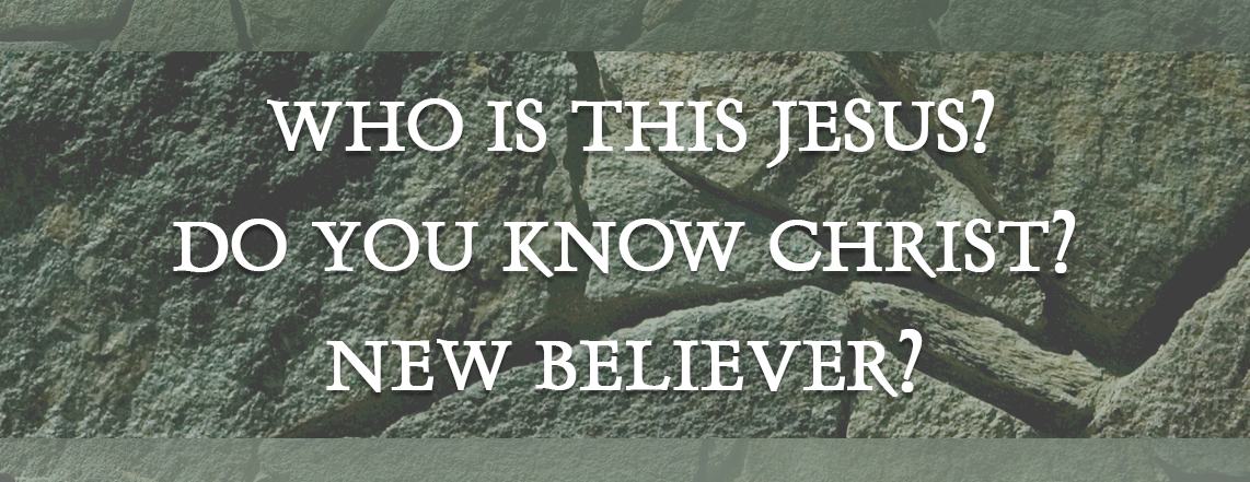 Banner New Believer2.png